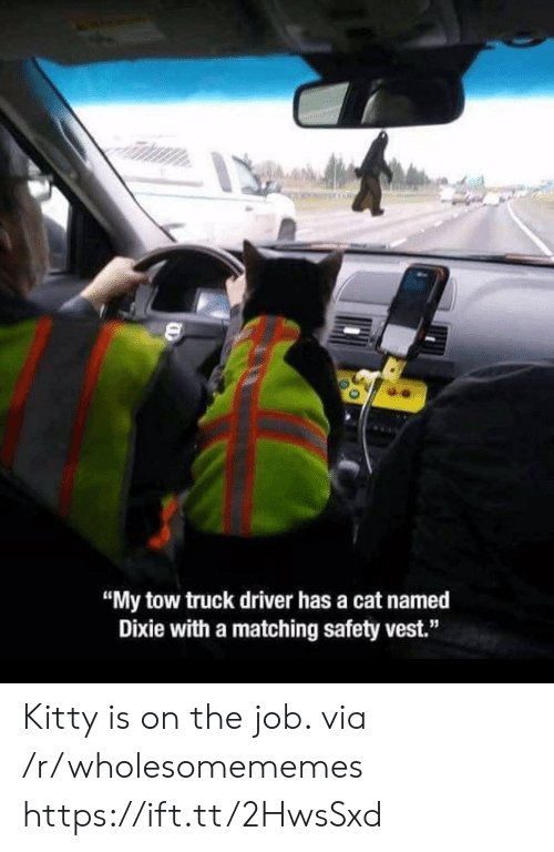"""Tow: """"My tow truck driver has a cat named  Dixie with a matching safety vest."""" Kitty is on the job. via /r/wholesomememes https://ift.tt/2HwsSxd"""