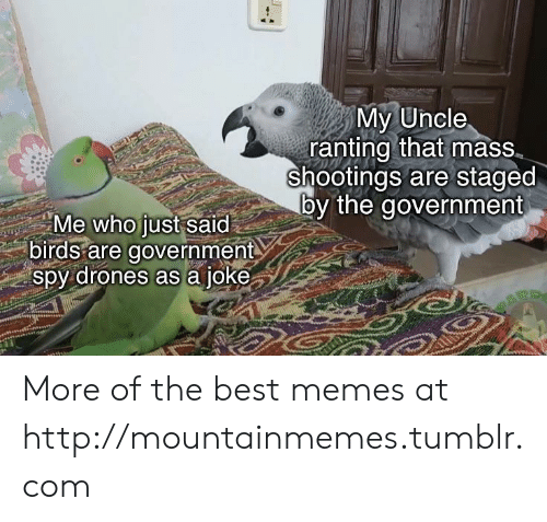 spy: My Uncle  ranting that mass  shootings are staged  by the government  Me who just said  birds are government  spy drones as a joke More of the best memes at http://mountainmemes.tumblr.com