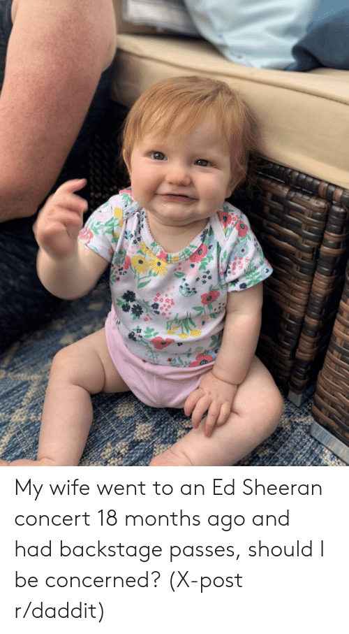concert: My wife went to an Ed Sheeran concert 18 months ago and had backstage passes, should I be concerned? (X-post r/daddit)