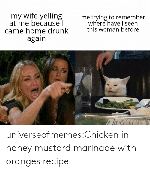 Drunk, Tumblr, and Blog: my wife yelling  at me because l  came home drunk  again  me trying to remember  where have I seen  this woman before universeofmemes:Chicken in honey mustard marinade with oranges recipe