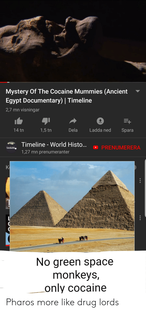 drug lords: Mystery Of The Cocaine Mummies (Ancient  Egypt Documentary) | Timeline  2,7 mn visningar  Dela  14 tn  Ladda ned  1,5 tn  Spara  Timeline-World Histo...  PRENUMERERA  TIMELINE  1,27 mn prenumeranter  K  No green space  monkeys,  only cocaine Pharos more like drug lords