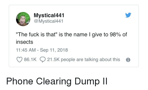 "Phone, Fuck, and Name: Mystical441  OMystical441  ""The fuck is that"" is the name I give to 98% of  insects  11:45 AM - Sep 11, 2018  86.1K  21.5K people are talking about this Phone Clearing Dump II"