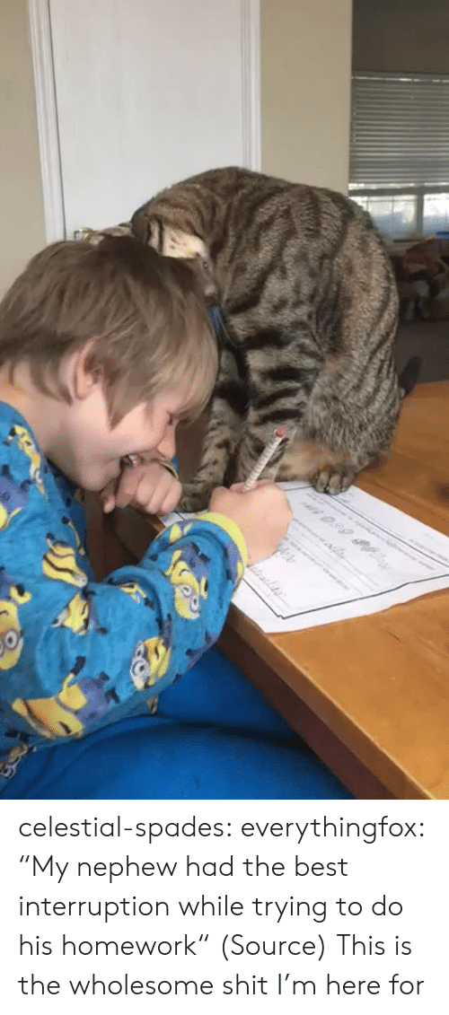 "Trying To Do: n 0.99 celestial-spades:  everythingfox:   ""My nephew had the best interruption while trying to do his homework"" (Source)   This is the wholesome shit I'm here for"