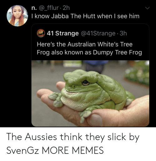 Whites: n. @_fflur 2h  I know Jabba The Hutt when I see him  41 Strange @41Strange 3h  Here's the Australian White's Tree  Frog also known as Dumpy Tree Frog The Aussies think they slick by SvenGz MORE MEMES