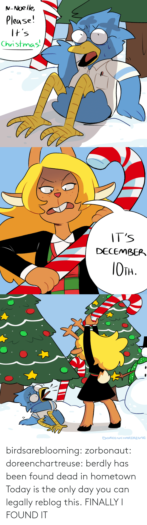 Christmas, Target, and Tumblr: N-Noelle,  Please!  I+s  Christmas   IT'S  DECEMBEP  TH.   DOREENCHARTREUSE birdsareblooming:  zorbonaut:  doreenchartreuse: berdly has been found dead in hometown Today is the only day you can legally reblog this.  FINALLY I FOUND IT