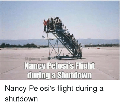Flight, Nancy, and During: Nancy Pelosis Flight  during a Shutdown