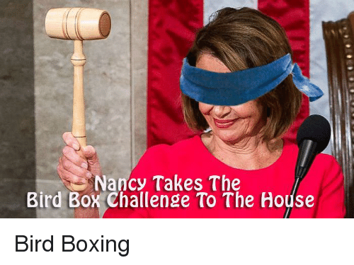 Boxing, House, and Conservative: Nancy Takes The  Bird Box Challenge To The House