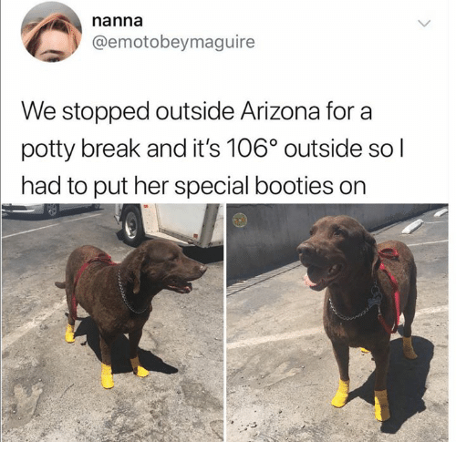 Arizona, Break, and Humans of Tumblr: nanna  @emotobeymaguire  We stopped outside Arizona for a  potty break and it's 106° outside so l  had to put her special booties on