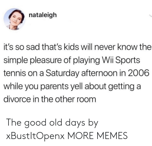 Dank, Memes, and Parents: nataleigh  it's so sad that's kids will never know the  simple pleasure of playing Wii Sports  tennis on a Saturday afternoon in 2006  while you parents yell about getting a  divorce in the other room The good old days by xBustItOpenx MORE MEMES
