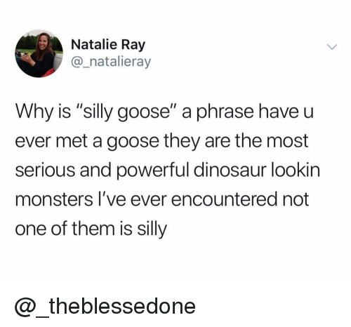 "Dinosaur, Dank Memes, and Powerful: Natalie Ray  @_natalieray  Why is ""silly goose"" a phrase have u  ever met a goose they are the most  serious and powerful dinosaur lookin  monsters I've ever encountered not  one of them is silly @_theblessedone"