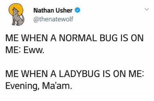 eww: Nathan Usher  @thenatewolf  ME WHEN A NORMAL BUG IS ON  ME: Eww  ME WHEN A LADYBUG IS ON ME:  Evening, Ma'am