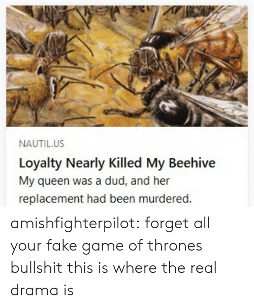 Fake, Game of Thrones, and Tumblr: NAUTIL.US  Loyalty Nearly Killed My Beehive  My queen was a dud, and her  replacement had been murdered. amishfighterpilot: forget all your fake game of thrones bullshit this is where the real drama is