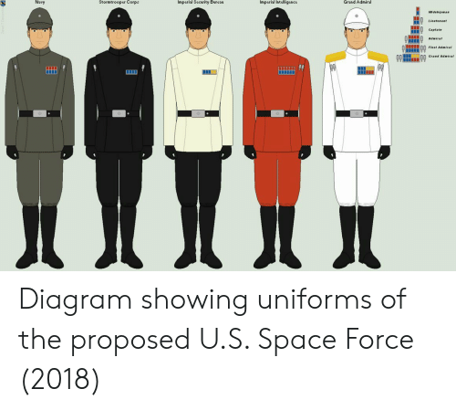 Stormtrooper: Navy  Stormtrooper Corpa  Imperial Security Bureau  Imperial Intelligence  Grand Admiral  Midskipa  Lieut. aat  Captain  Q Admiral  Fleet Admirat  Grand Admira Diagram showing uniforms of the proposed U.S. Space Force (2018)