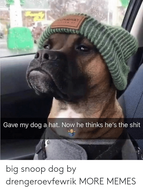 Snoop: NAWAY  Gave my dog a hat. Now he thinks he's the shit big snoop dog by drengeroevfewrik MORE MEMES