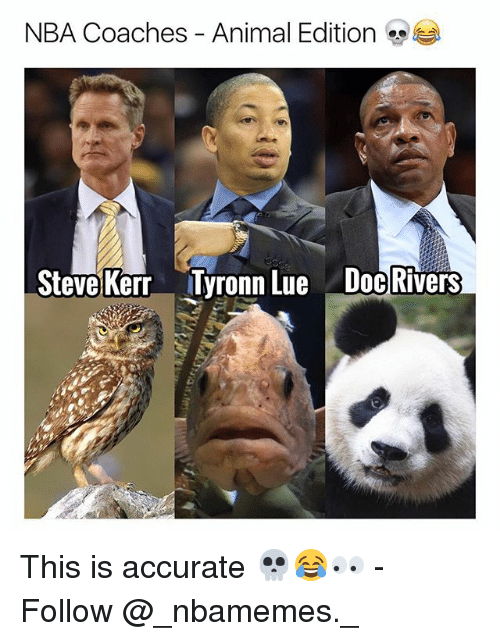 Steve Kerr: NBA Coaches-Animal Edition  Steve Kerr  Tyronn Lue  Doc Rivers This is accurate 💀😂👀 - Follow @_nbamemes._