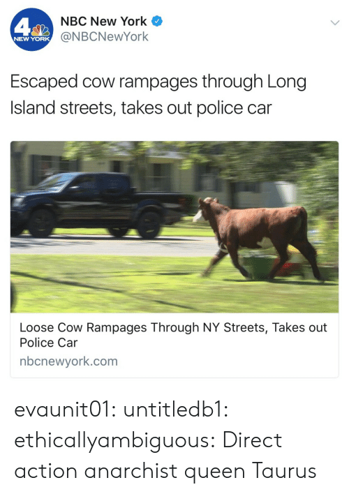 Anarchist: NBC New York  @NBCNewYork  NEW YORK  Escaped cow rampages through Long  Island streets, takes out police car  Loose Cow Rampages Through NY Streets, Takes out  Police Car  nbcnewyork.com evaunit01:  untitledb1:   ethicallyambiguous: Direct action anarchist queen   Taurus