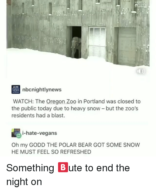 zoos: nbcnightlynew  WATCH: The Oregon Zoo in Portland was closed to  the public today due to heavy snow - but the zoo's  residents had a blast.  i-hate-vegans  Oh my GODD THE POLAR BEAR GOT SOME SNOW  HE MUST FEEL SO REFRESHED Something 🅱️ute to end the night on