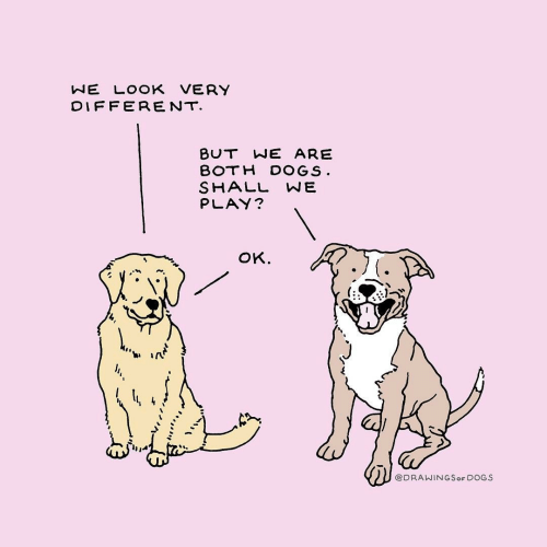Dogs, Play, and Look: NE LOOK VERY  DIFFERENT  BUT WE ARE  BOTH DOGS  SHALL WE  PLAY?  oK.  ti ir  @DRAWINGSoF DOGS