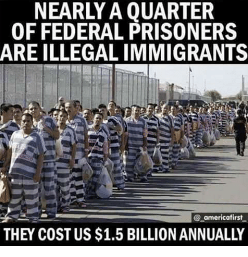 Memes, 🤖, and Prisoners: NEARLY A QUARTER  OF FEDERAL PRISONERS  ARE ILLEGAL IMMIGRANTS  @ americafirst  THEY COST US $1.5 BILLION ANNUALLY