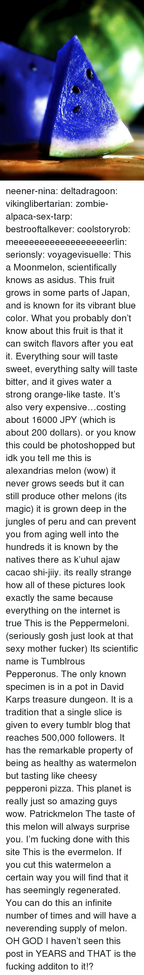 Bailey Jay, Fucking, and God: neener-nina:  deltadragoon:  vikinglibertarian:  zombie-alpaca-sex-tarp:  bestrooftalkever:  coolstoryrob:  meeeeeeeeeeeeeeeeeeerlin:  serionsly:  voyagevisuelle:  This a Moonmelon, scientifically knows as asidus. This fruit grows in some parts of Japan, and is known for its vibrant blue color. What you probably don't know about this fruit is that it can switch flavors after you eat it. Everything sour will taste sweet, everything salty will taste bitter, and it gives water a strong orange-like taste. It's also very expensive…costing about ¥16000 JPY (which is about 200 dollars).  or you know this could be photoshopped  but idk you tell me   this is alexandrias melon (wow) it never grows seeds but it can still produce other melons (its magic) it is grown deep in the jungles of peru and can prevent you from aging well into the hundreds it is known by the natives there as k'uhul ajaw cacao shi-jiiy. its really strange how all of these pictures look exactly the same because everything on the internet is true   This is the Peppermeloni. (seriously gosh just look at that sexy mother fucker) Its scientific name is Tumblrous Pepperonus. The only known specimen is in a pot in David Karps treasure dungeon. It is a tradition that a single slice is given to every tumblr blog that reaches 500,000 followers. It has the remarkable property of being as healthy as watermelon but tasting like cheesy pepperoni pizza. This planet is really just so amazing guys wow.   Patrickmelon The taste of this melon will always surprise you.  I'm fucking done with this site   This is the evermelon. If you cut this watermelon a certain way you will find that it has seemingly regenerated. You can do this an infinite number of times and will have a neverending supply of melon.    OH GOD I haven't seen this post in YEARS and THAT is the fucking additon to it!?