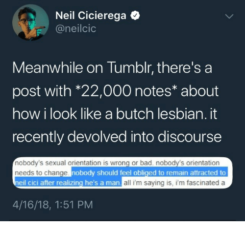 Cic: Neil Cicierega Q  @neilcio  Meanwhile on Tumblr, there's a  post with *22,000 notes* about  how i look like a butch lesbian. it  recently devolved into discourse  nobody's sexual orientation is wrong or bad. nobody's orientation  needs to change  neil cic  nobody should feel obliged to remain attracted to  i after realizing he's a  man all i'm saying is, i'm fascinated a  4/16/18, 1:51 PM
