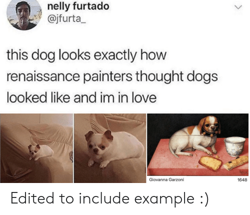 painters: nelly furtado  @jfurta  this dog looks exactly how  renaissance painters thought dogs  looked like and im in love  Giovanna Garzoni  1648 Edited to include example :)