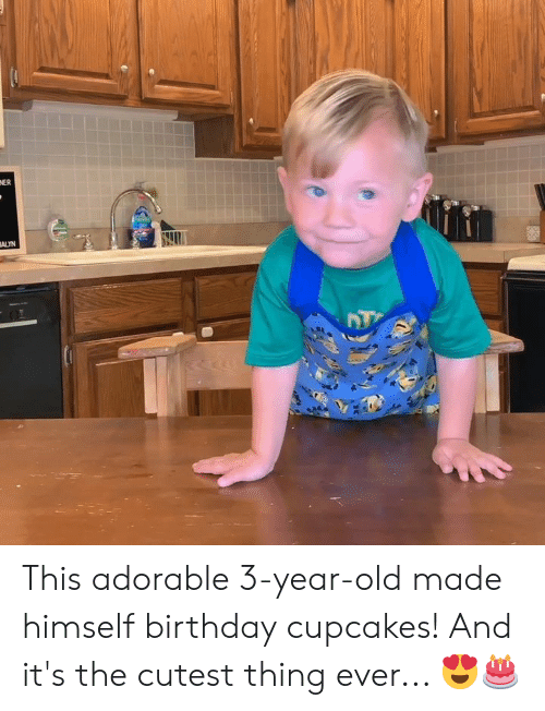 Birthday, Cupcakes, and Old: NER  ALYN This adorable 3-year-old made himself birthday cupcakes! And it's the cutest thing ever... 😍🎂