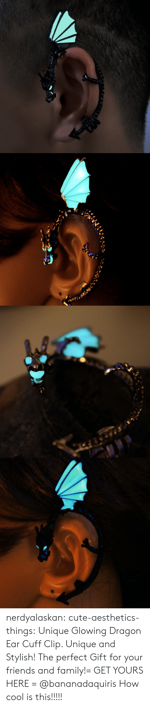 Stylish: nerdyalaskan:  cute-aesthetics-things:  Unique GlowingDragon Ear Cuff Clip. Unique and Stylish! The perfect Gift for your friends and family!= GET YOURS HERE =  @bananadaquiris  How cool is this!!!!!
