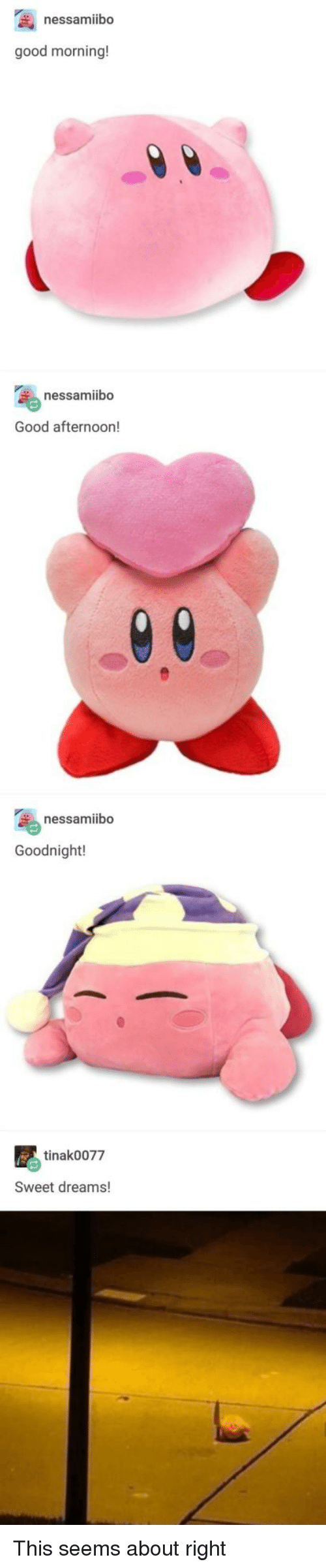 Good Morning, Good, and Dreams: nessamibo  good morning!  nessamiibo  Good afternoon!  nessamiibo  Goodnight!  tinak0077  Sweet dreams! This seems about right