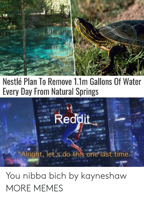 """one last time: Nestlé Plan To Remove 1.1m Gallons Of Water  Every Day From Natural Springs  Reddit  """"Alright, let's do this one last time. You nibba bich by kayneshaw MORE MEMES"""