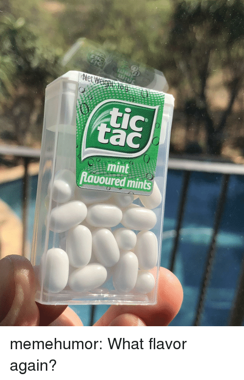 Tumblr, Blog, and Http: Net woi  tic  tac  mint  Lavoured mints memehumor:  What flavor again?