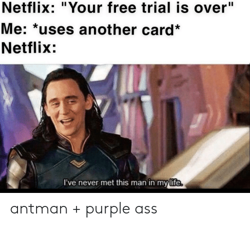 """Antman: Netflix: """"Your free trial is over""""  Me: *uses another card*  Netflix:  I've never met this man in my  life antman + purple ass"""