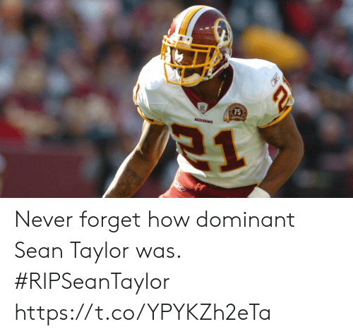 Memes, Never, and 🤖: Never forget how dominant Sean Taylor was. #RIPSeanTaylor https://t.co/YPYKZh2eTa