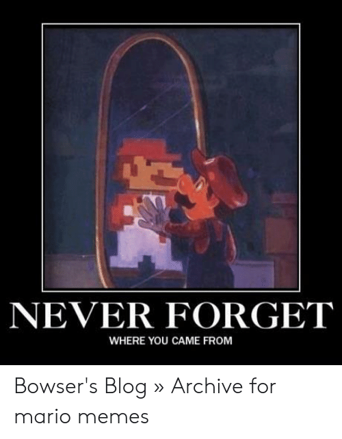 Funny Mario Memes: NEVER FORGET  WHERE YOU CAME FROM Bowser's Blog » Archive for mario memes