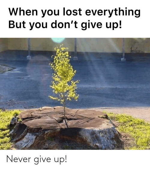 never give up: Never give up!