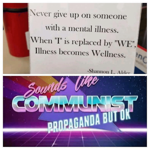 """Propaganda, Communist, and Never: Never give up on someone  with a mental illness.  When """"I"""" is replaced by """"WE"""",  Illness becomes Wellness.n  Shannon L. Alder  Sounds Vte  COMMUNIST  PROPAGANDA BUT OK"""