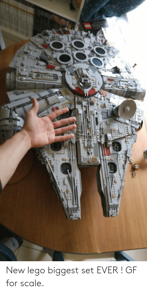 For Scale: New lego biggest set EVER ! GF for scale.
