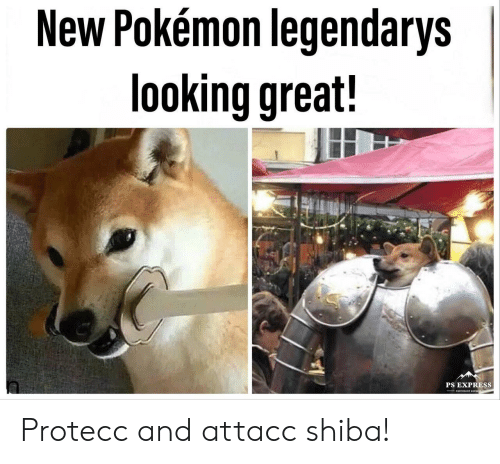 Photoshop, Pokemon, and Express: New Pokémon legendarys  looking great!  PS EXPRESS  PHOTOSHOP EXPRLS Protecc and attacc shiba!
