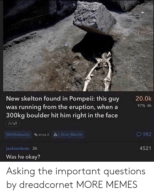 Dank, Memes, and Target: New skelton found in Pompeii: this guy  was running from the eruption, when a  300kg boulder hit him right in the face  20.0k  97% 4h  It/all  Welthatsucks ansa.it Shot Marvin  982  4521  jacksonbros 3h  Was he okay? Asking the important questions by dreadcornet MORE MEMES