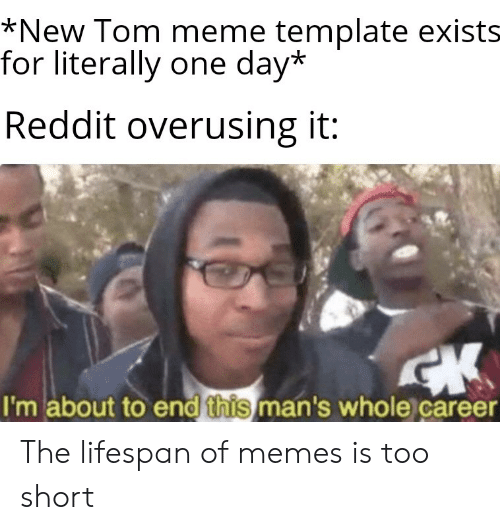 New Tom Meme Template Exists for Literally One Day* Reddit
