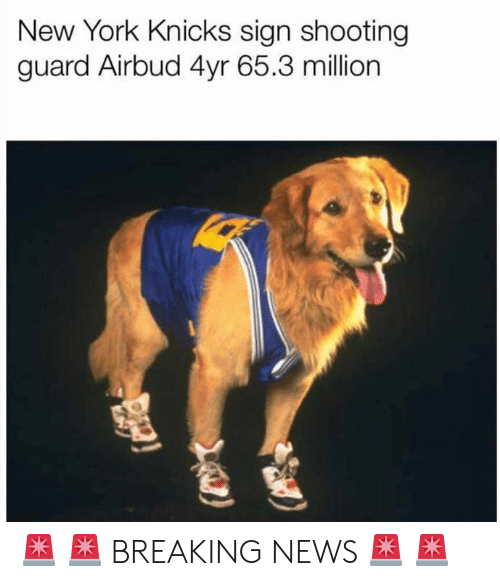 New York Knicks, New York, and News: New York Knicks sign shooting  guard Airbud 4yr 65.3 million 🚨 🚨 BREAKING NEWS 🚨 🚨