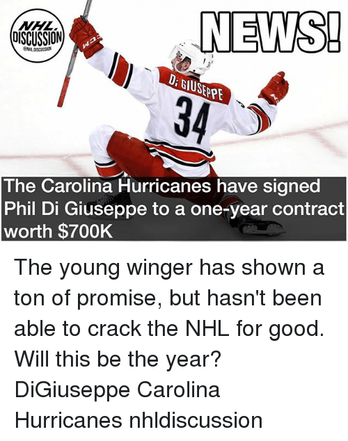 winger: NEWS!  34  OISCUSSION  D: GIUSEPPE  SEPE  The Carolina Hurricanes have signed  Phil Di Giuseppe to a one-year contract  worth $700K The young winger has shown a ton of promise, but hasn't been able to crack the NHL for good. Will this be the year? DiGiuseppe Carolina Hurricanes nhldiscussion