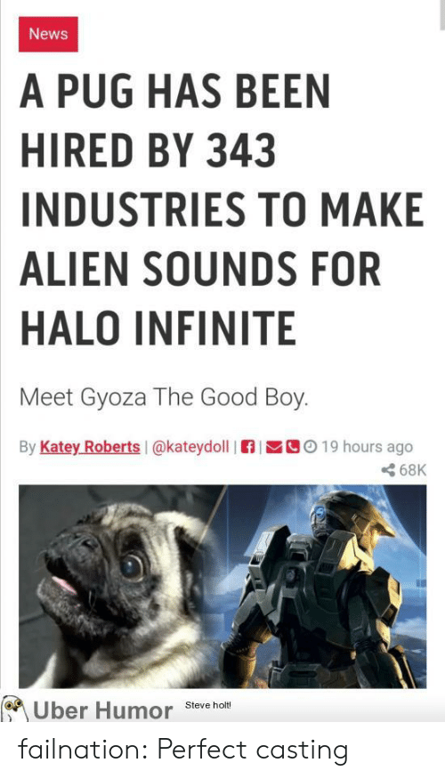 Halo, News, and Tumblr: News  A PUG HAS BEEN  HIRED BY 343  INDUSTRIES TO MAKE  ALIEN SOUNDS FOR  HALO INFINITE  Meet Gyoza The Good Boy.  By Katey Roberts I@kateydoll  C019 hours ago  68K  Uber Humor  Steve holt! failnation:  Perfect casting