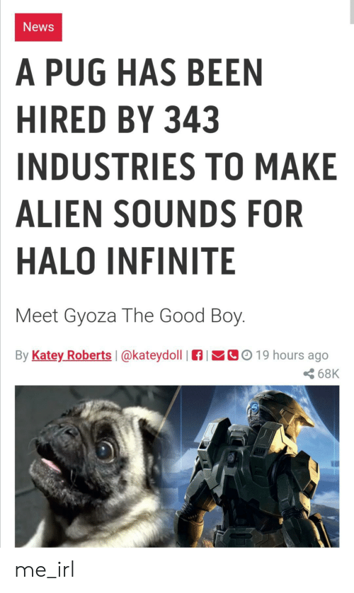 Halo: News  A PUG HAS BEEN  HIRED BY 343  INDUSTRIES TO MAKE  ALIEN SOUNDS FOR  HALO INFINITE  Meet Gyoza The Good Boy.  By Katey Roberts  CO19 hours ago  @kateydoll  68K me_irl