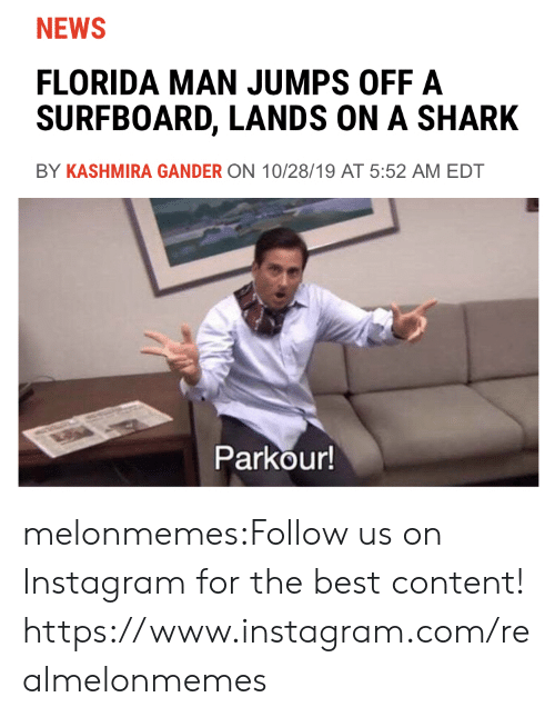 Florida Man: NEWS  FLORIDA MAN JUMPS OFF A  SURFBOARD, LANDS ON A SHARK  BY KASHMIRA GANDER ON 10/28/19 AT 5:52 AM EDT  Parkour! melonmemes:Follow us on Instagram for the best content! https://www.instagram.com/realmelonmemes