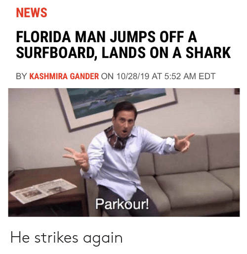 Florida Man: NEWS  FLORIDA MAN JUMPS OFF A  SURFBOARD, LANDS ON A SHARK  BY KASHMIRA GANDER ON 10/28/19 AT 5:52 AM EDT  Parkour! He strikes again