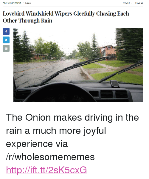 "lovebird: NEWS IN PHOTOS 6.26.17  VOL 53  ISSUE 25  Lovebird Windshield Wipers Gleefully Chasing Each  Other Through Rain <p>The Onion makes driving in the rain a much more joyful experience via /r/wholesomememes <a href=""http://ift.tt/2sK5cxG"">http://ift.tt/2sK5cxG</a></p>"