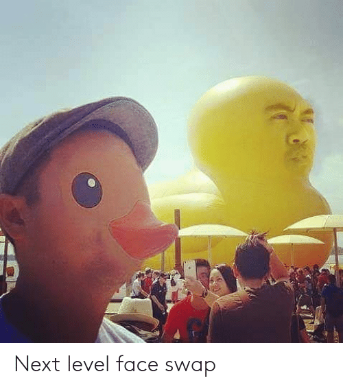 face: Next level face swap