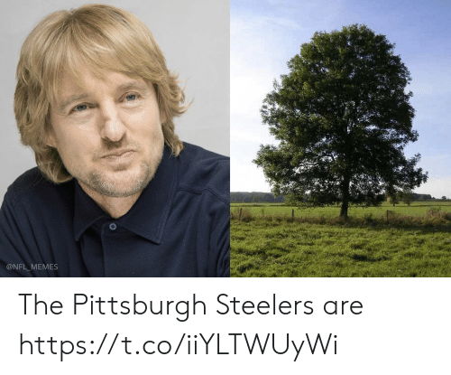 Football, Memes, and Nfl: @NFL MEMES The Pittsburgh Steelers are https://t.co/iiYLTWUyWi