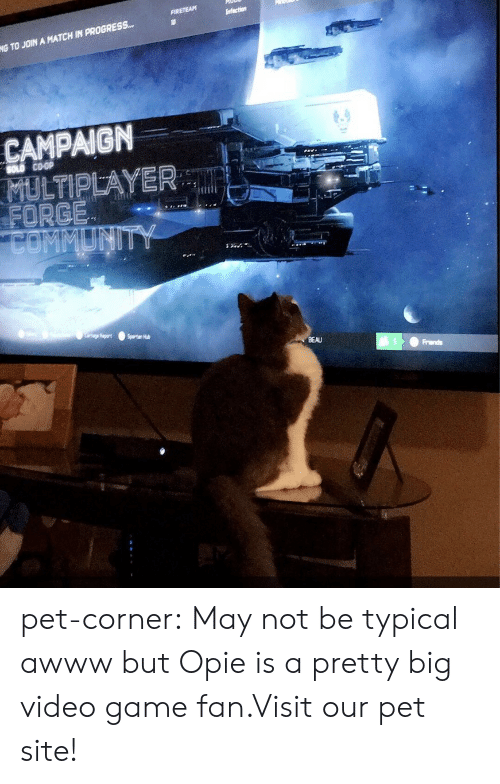 opie: NG TO JOIN A MATCH IN PROGRESS-  CAMPAIGN  SOLD COOP  FORGE  BEAU pet-corner:  May not be typical awww but Opie is a pretty big video game fan.Visit our pet site!
